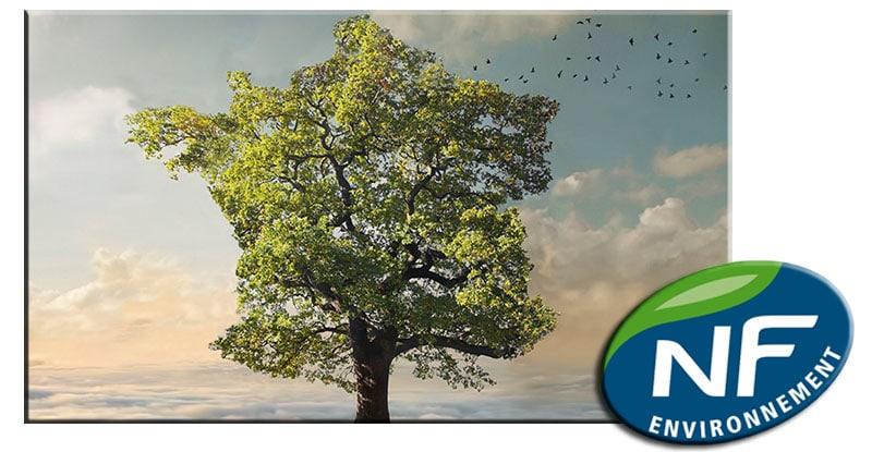 La norme française NF environnement